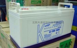 蓄电池6-GFM系列
